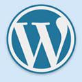 Shortlinks | Короткие ссылки в wordpress 3 автоматически через сервиc bit.ly